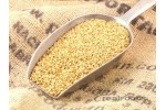 GREEN FOODS Gold Flaxseed/ Linseed 250G
